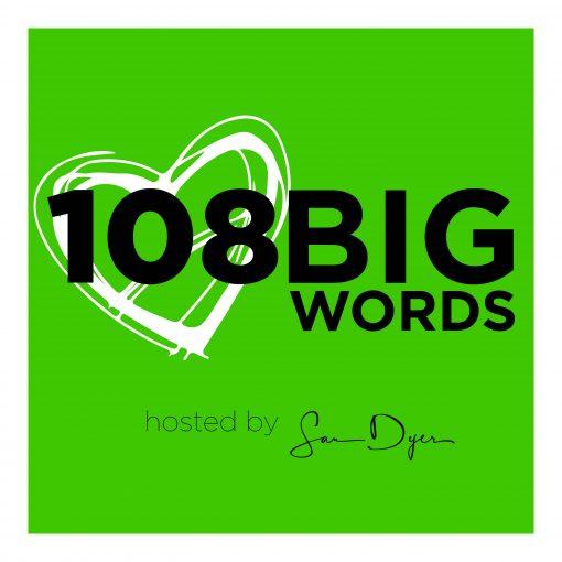 108 Big Words logo splash